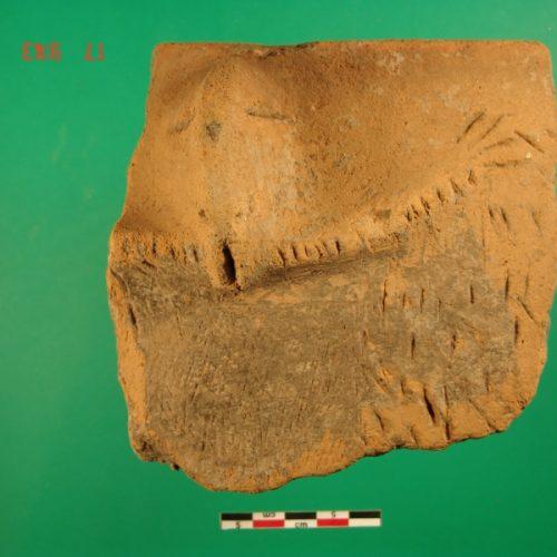 Baselice (Bn) - Comunità Montana del Fortore - Protome antropomorfa Neolitica
